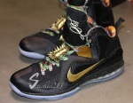 nike-lebron-9-watch-the-throne-pe-detailed-images-19